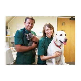 /234201-pet-hospital-services_54320.jpg