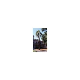/2400706-bidwell_mansion-chico_51648.jpg