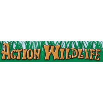/action-wildlife_56904.jpg