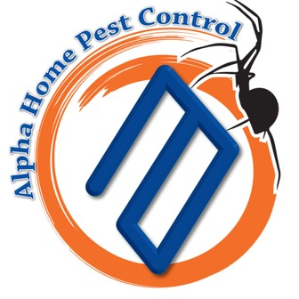 /alpha-logo_72819.png