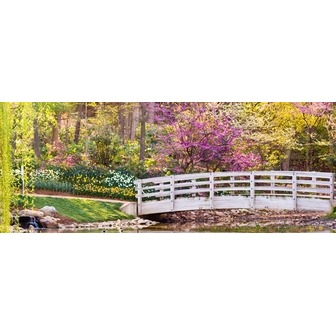 /banner-spring-doherty-bridge_57827.jpg