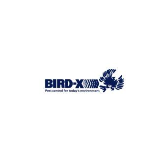 /bird-xx_164098.png