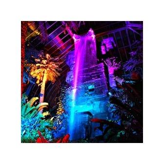 /buffalobotanicalnightlights_grande_54639.jpg?388