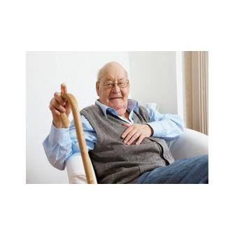 /cane-senior_47270.jpg