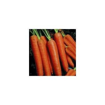 /carrotnapoli_thumbnail_47674.jpg&maxx=150&maxy=0