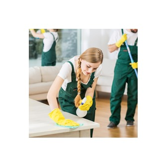 /cleaning-professional-florida_169838.png