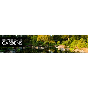 /dbg_our-gardens_0_61370.jpg