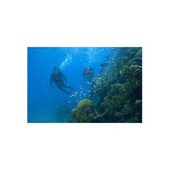/divers_59087.jpg