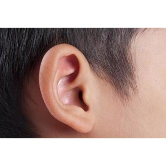 /ear_109139.jpg