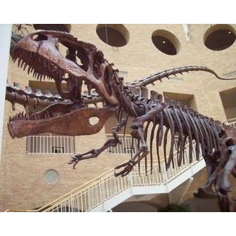 /fernbank-museum-of-natural_46694.jpg
