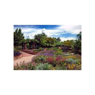 /garden_47113.jpg