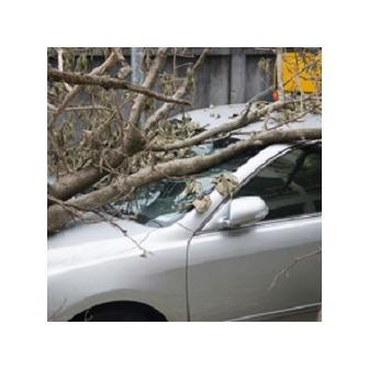 /insuranceservices1_219955.jpeg
