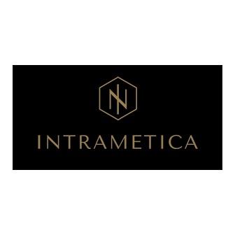 /intrametca-logo-3_92396.png