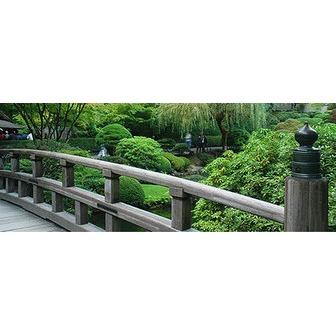 /japanesegarden-1_50176.jpeg