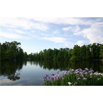 /lake1_58182.jpg