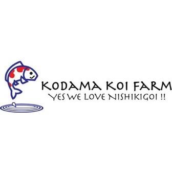 /logo-yoko_result-large_204720.jpg