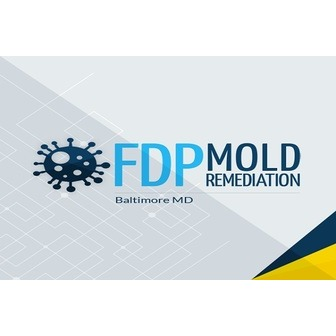 /logofdp_mold_remediation_169533.jpg