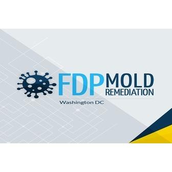 /logofdp_mold_remediation_170027.jpg