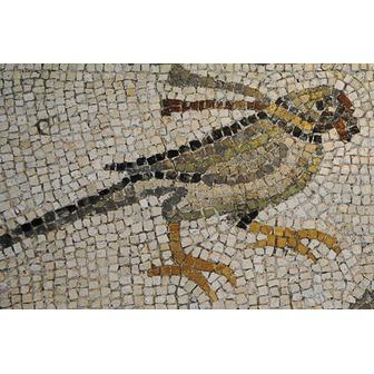 /mosaic_parrot_48201.jpg