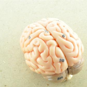 /neurology-neurosurgeons1_189542.png