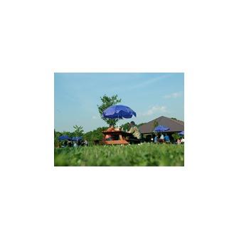 /picnickers_48256.jpg