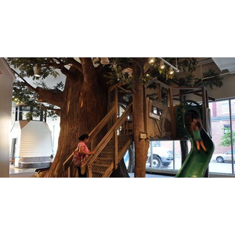 /slide-tree_53416.jpg