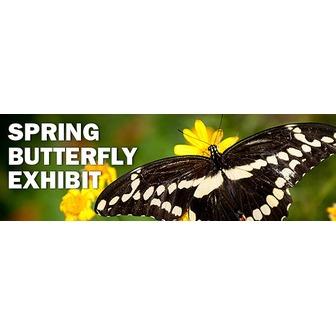 /spring-butterfly-2013_610x194_55361.jpg?1359736516