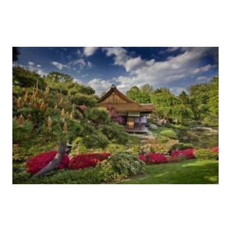/tea-garden-house-spring-2008webcompressed-300x200_50565.jpg