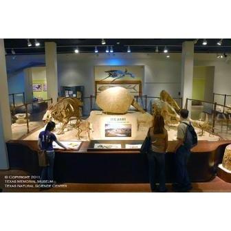 /texas-memorial-museum_46713.jpg