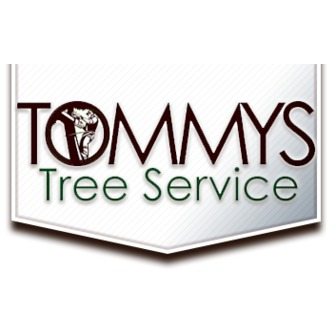 /tommys-tree-service2_88291.png
