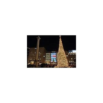 /tree_lighting_160_49061.jpg