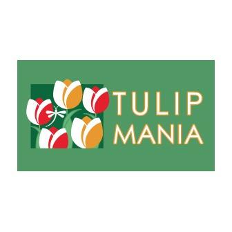 /tulips_62442.jpg