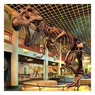 /tyrannosaurus_308x308_50580.ashx?w=308&h=308&as=1