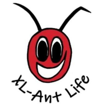 /xl-ant-life_213231.jpg