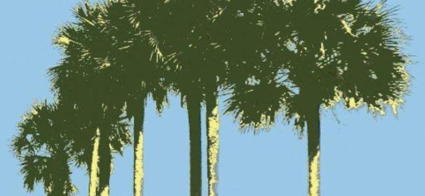 /city-scape_palm-bay-fl_49829.jpg