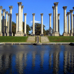 Corinthian Capitol Columns, United States National Arboretum, Washington D.C