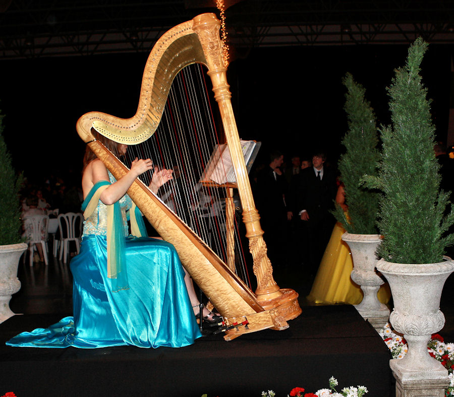 Harp Player Related Keywords - Harp Player Long Tail ...