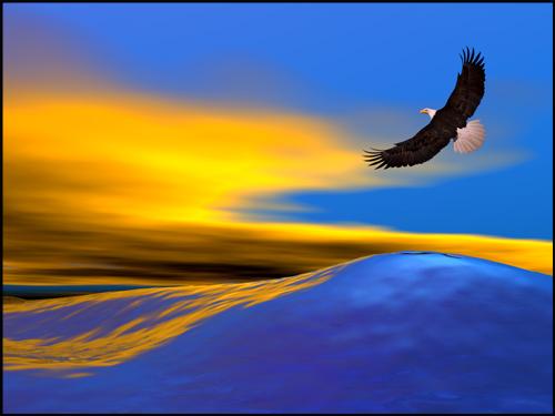 The teachings of Don Juan Matus  - Page 4 Eagle_27874