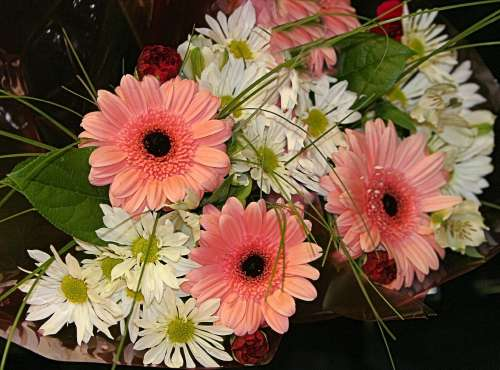 some lovely pink gerbera daisies and other flowers in a bouquet.