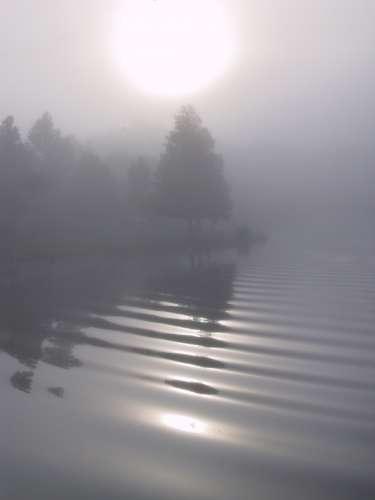 Slike za danas - Page 3 Landscapestreeswater_5914