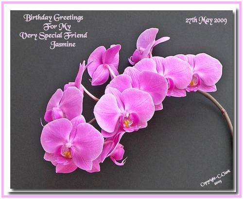 birthday greetings for friend. Special Birthday Greetings