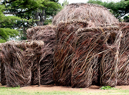 tree branch sculpture 2