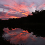 Salado Creek Sunset