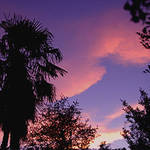 6-9-08 Sunset