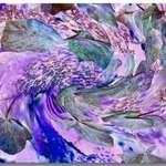 Hydrangea Abstract