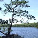 Provoking Lake