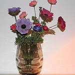 Anemones in vase