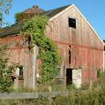 old summery barn