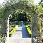"""Arch - """"Enter Into the Rose Garden"""""""