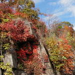 Palisades in Autumn